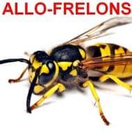 ALLO FRELONS